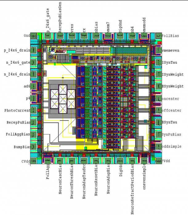Layout of PhysioFriend chip